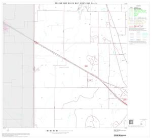 Primary view of object titled '2000 Census County Block Map: Montague County, Block 13'.