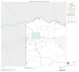 Primary view of object titled '2000 Census County Block Map: Titus County, Block 1'.