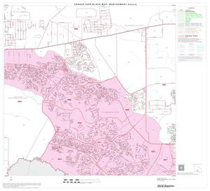 Primary view of object titled '2000 Census County Block Map: Montgomery County, Block 34'.