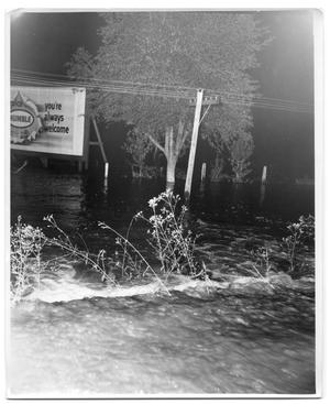 Primary view of object titled '[Photograph of Utility Pole and Billboard in Deep Water]'.
