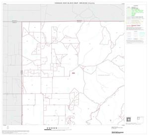 Primary view of object titled '2000 Census County Block Map: Briscoe County, Block 1'.