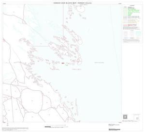 Primary view of object titled '2000 Census County Block Map: Kenedy County, Block 11'.