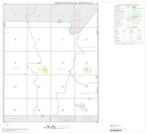 Primary view of object titled '2000 Census County Block Map: Medina County, Index'.