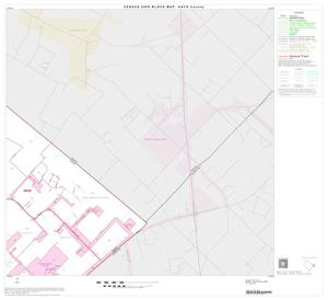 Primary view of object titled '2000 Census County Block Map: Hays County, Block 16'.