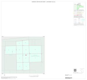 Primary view of object titled '2000 Census County Block Map: Jackson County, Inset D01'.