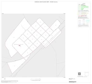 Primary view of object titled '2000 Census County Block Map: Irion County, Inset B01'.