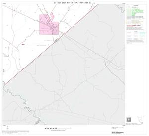Primary view of object titled '2000 Census County Block Map: Cherokee County, Block 21'.