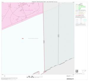 Primary view of object titled '2000 Census County Block Map: Galveston County, Block 13'.