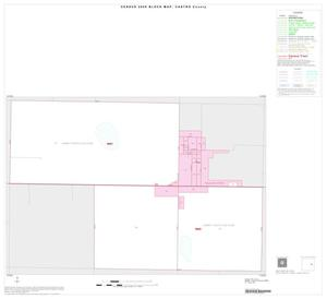 Primary view of object titled '2000 Census County Block Map: Castro County, Inset B01'.