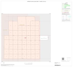Primary view of object titled '2000 Census County Block Map: Young County, Inset B01'.