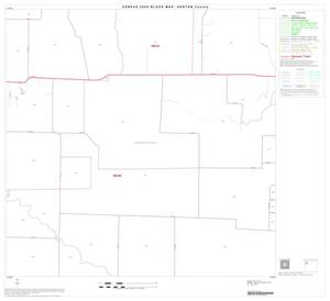 Primary view of object titled '2000 Census County Block Map: Denton County, Block 10'.