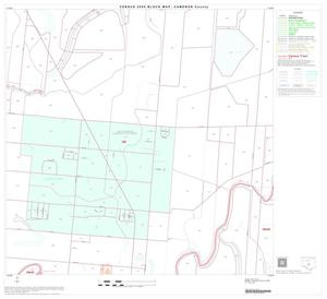 Primary view of object titled '2000 Census County Block Map: Cameron County, Block 40'.