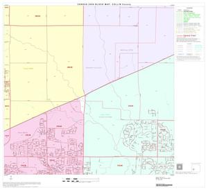 Primary view of object titled '2000 Census County Block Map: Collin County, Block 29'.