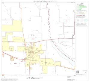 Primary view of object titled '2000 Census County Block Map: Collin County, Block 25'.