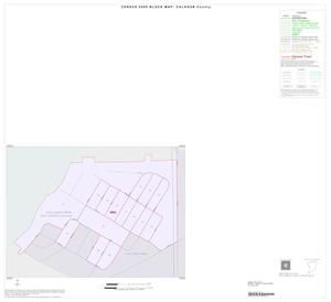 Primary view of object titled '2000 Census County Block Map: Calhoun County, Inset A01'.