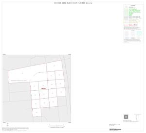 Primary view of object titled '2000 Census County Block Map: Grimes County, Inset B01'.