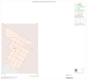 Primary view of object titled '2000 Census County Block Map: Waller County, Inset D01'.