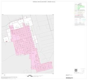 Primary view of object titled '2000 Census County Block Map: Crane County, Inset A01'.