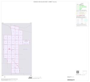 Primary view of object titled '2000 Census County Block Map: Dimmit County, Inset D01'.