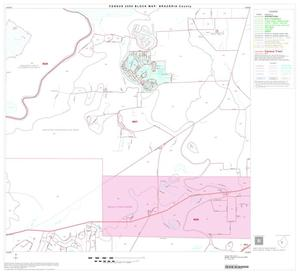 Primary view of object titled '2000 Census County Block Map: Brazoria County, Block 24'.