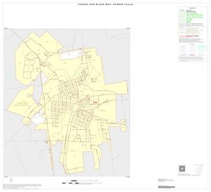 Primary view of object titled '2000 Census County Block Map: Karnes County, Inset E01'.