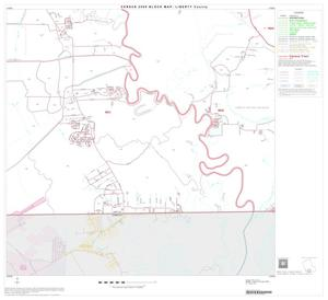 Primary view of object titled '2000 Census County Block Map: Liberty County, Block 19'.