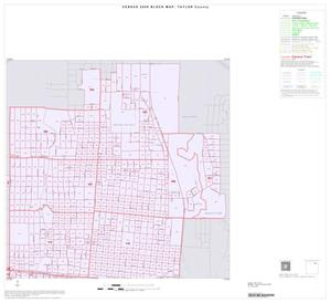 Primary view of object titled '2000 Census County Block Map: Taylor County, Inset C02'.