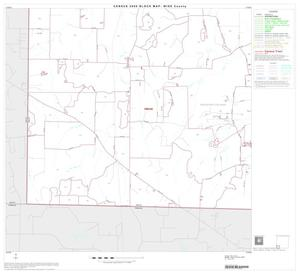 Primary view of object titled '2000 Census County Block Map: Wise County, Block 13'.