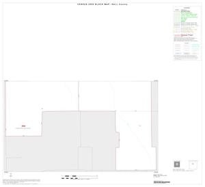 Primary view of object titled '2000 Census County Block Map: Hall County, Inset B02'.