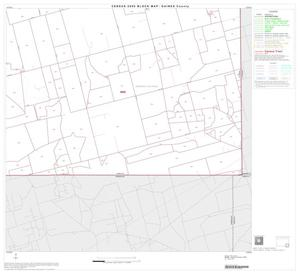 Primary view of object titled '2000 Census County Block Map: Gaines County, Block 12'.