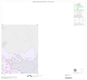 Primary view of object titled '2000 Census County Block Map: Hays County, Inset D02'.