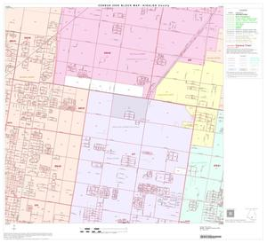 Primary view of object titled '2000 Census County Block Map: Hidalgo County, Block 69'.