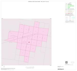 Primary view of object titled '2000 Census County Block Map: Willacy County, Inset D01'.