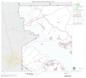 Primary view of object titled '2000 Census County Block Map: Marion County, Block 1'.