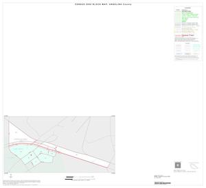 Primary view of object titled '2000 Census County Block Map: Angelina County, Inset A01'.