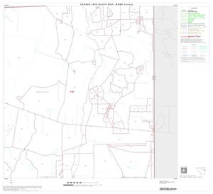 Primary view of object titled '2000 Census County Block Map: Webb County, Block 13'.