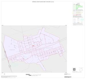 Primary view of object titled '2000 Census County Block Map: Milam County, Inset F01'.