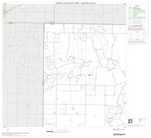 Primary view of object titled '2000 Census County Block Map: Concho County, Block 1'.