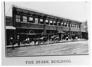 Primary view of object titled '[The Stark Building]'.