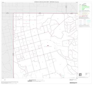 Primary view of object titled '2000 Census County Block Map: Borden County, Block 1'.
