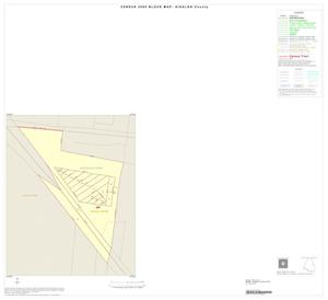 Primary view of object titled '2000 Census County Block Map: Hidalgo County, Inset F01'.