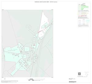 Primary view of object titled '2000 Census County Block Map: Hays County, Inset B01'.