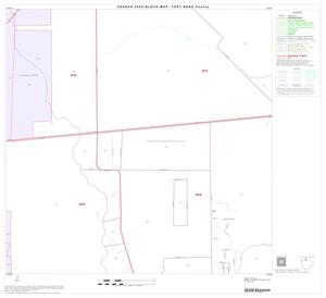 Primary view of object titled '2000 Census County Block Map: Fort Bend County, Block 10'.