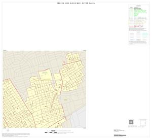 Primary view of object titled '2000 Census County Block Map: Ector County, Inset D02'.