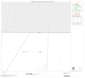 Primary view of object titled '2000 Census County Block Map: Hidalgo County, Block 3'.