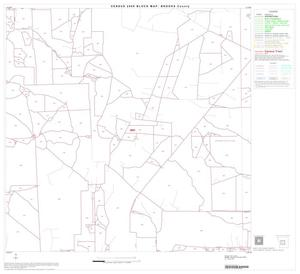 Primary view of object titled '2000 Census County Block Map: Brooks County, Block 5'.