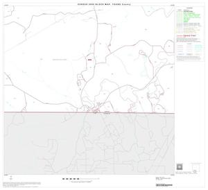 Primary view of object titled '2000 Census County Block Map: Young County, Block 14'.