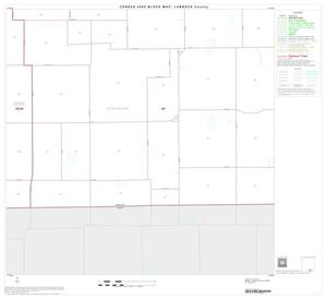 Primary view of object titled '2000 Census County Block Map: Lubbock County, Block 47'.