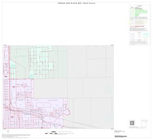 Primary view of object titled '2000 Census County Block Map: Hale County, Inset B04'.