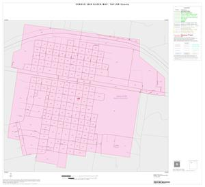Primary view of object titled '2000 Census County Block Map: Taylor County, Inset B01'.